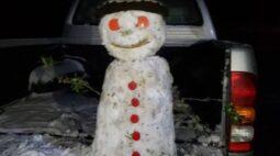"""Memes da neve: confira as """"obras de arte"""" feitas com o gelo no Brasil"""