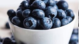 Conheça como é feita a produção de Mirtilo, a fruta da longevidade
