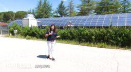 Placas  fotovoltaicas e biomassa na produção de energia