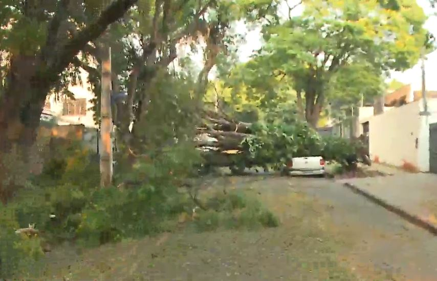 Chuva deixa mais de 179 mil residências sem luz no Paraná e ventos chegam a 97 km/h