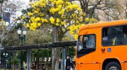 Curitiba volta para Bandeira Laranja a partir de quinta-feira (25)