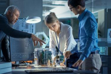 A liderança das mulheres em um ambiente de inovação