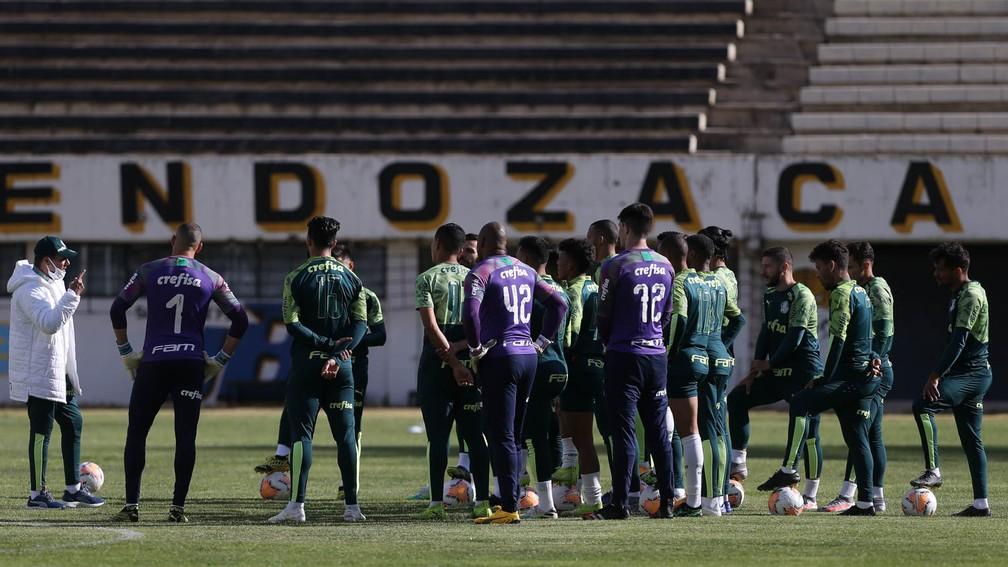 Palmeiras retoma Libertadores 189 dias depois: veja como está o time alviverde no torneio