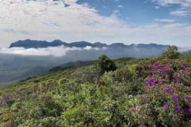 Parques de montanha voltam a ser fechados a partir desta sexta-feira (18); confira lista