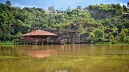 Sol de rachar: Curitiba vai ter final de semana de verão