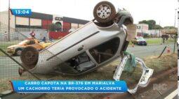 Carro capota na BR-376 em Marialva, um cachorro teria provocado o acidente