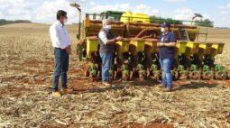 Cuidados com o solo no plantio | DICAS NA AGRICULTURA