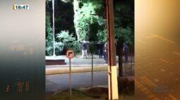 Imagens mostram abordagem suspeita de guardas municipais e mostra agressão a homem