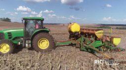 Confira os destaques do RIC Rural de domingo (25 de outubro)