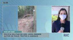 Polícia militar de São João prende autor de maus tratos a animais