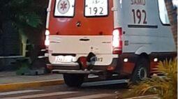 Cachorra sobe em para-choque de ambulância para não abandonar o dono