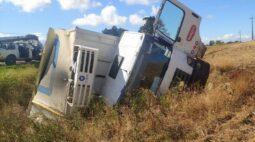 Caminhão de Londrina tomba na PR-466