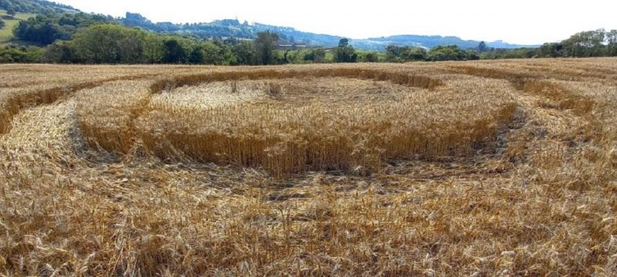 Círculos misteriosos aparecem em plantação no oeste