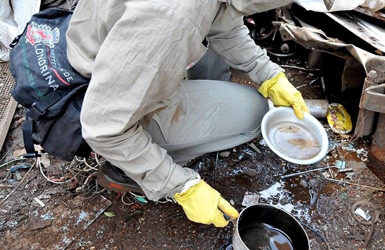 Paraná registra morte por dengue e mais de 33 mil alertas