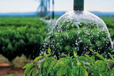 Estiagem no Paraná: Agronegócio e indústria são responsáveis por 90% do uso água