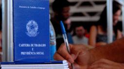 Feito no Paraná: programa vai gerar emprego e renda através da valorização de produtos paranaenses