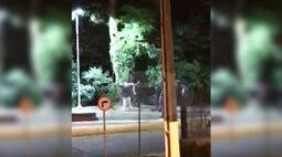 Vídeo mostra jovem sendo agredido por guardas municipais em parque