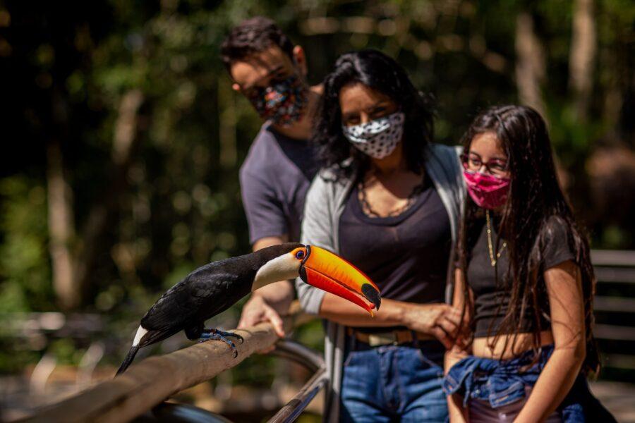 parque das aves4
