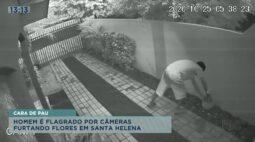 Homem é flagrado por câmeras furtando flores em Santa Helena