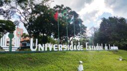 Cursos da UEL se destacam no ENADE com nota máxima