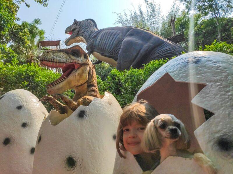 """Vale dos Dinossauros agora é """"Amigo dos Animais"""""""