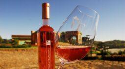 Outubro Rosa marca a chegada de vinhos e espumantes rosés