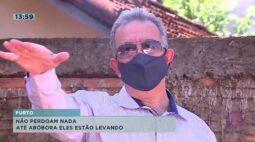 Morador está chateado com furtos até de abóboras no terreno em Londrina