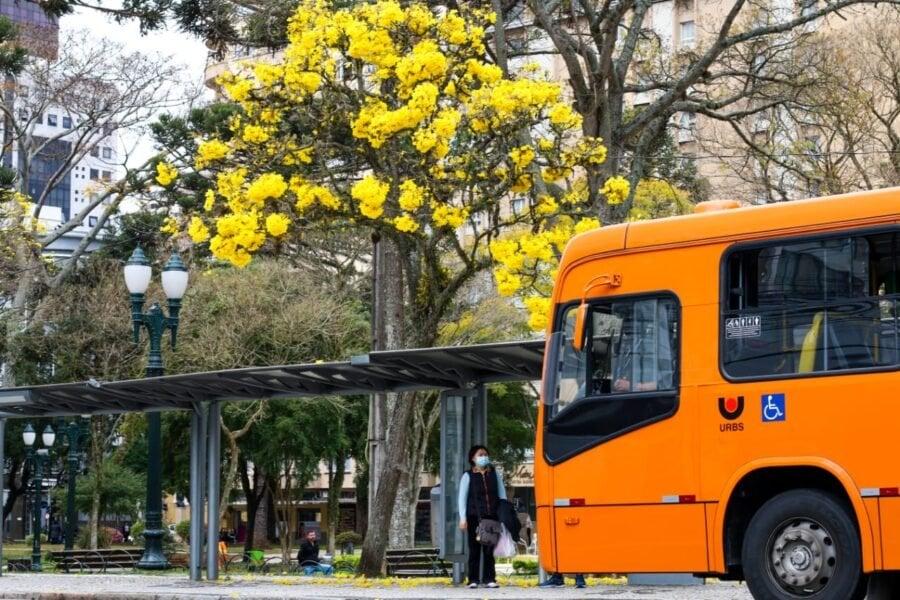 Curitiba pode adotar bandeira laranja até o fim do dia, diz secretária de Saúde