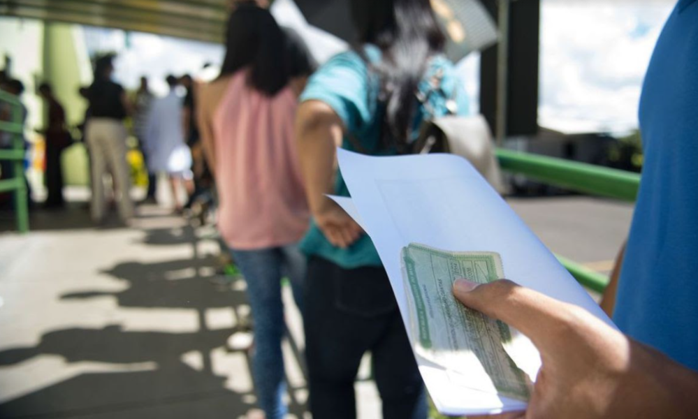 Eleições 2020 no Paraná: conheça o perfil do eleitor paranaense