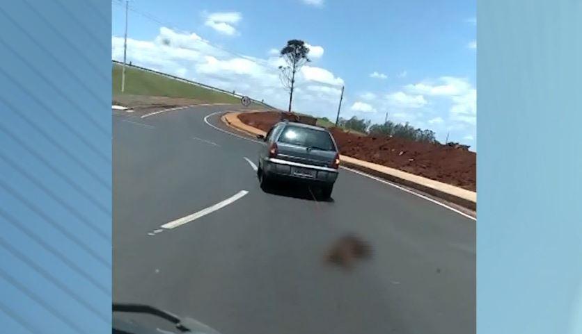 Motorista é flagrado arrastando cachorro em rodovia do Paraná