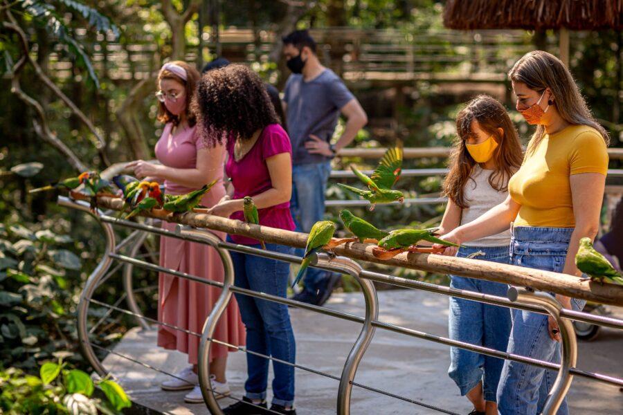 Parque das Aves volta a abrir às segundas-feiras