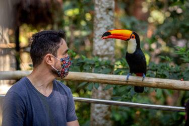 Parque das Aves supera as expectativas e recebe 8.061 visitantes no Feriadão de Finados