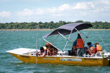 Itaipu vai utilizar tecnologia de última geração para controle de plantas aquáticas