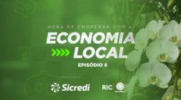 Produção de orquídeas cidade do Paraná é destaque no Brasil