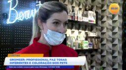 Groomer profissional faz tosas diferentes e coloração nos pets