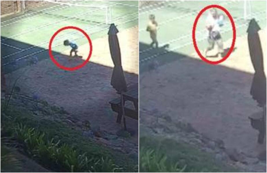 Ação rápida de avó salva vida de criança picada por cobra letal