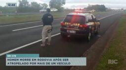 Homem morre em rodovia após ser atropelado por mais de um veículo