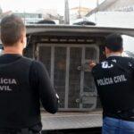 Polícia fecha laboratório de cocaína na Região Metropolitana