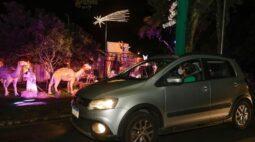 Após longas filas, drive-thru de Natal do Parque Barigui funcionará com agendamento