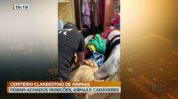 Foram achados munições, armas e cadáveres em cemitério clandestino de animais