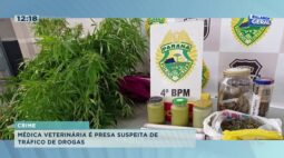 Polícia encontra drogas em clínica veterinária clandestina, médica é presa por tráfico