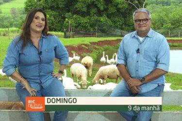 Confira os destaques do RIC Rural de domingo (31 de janeiro)