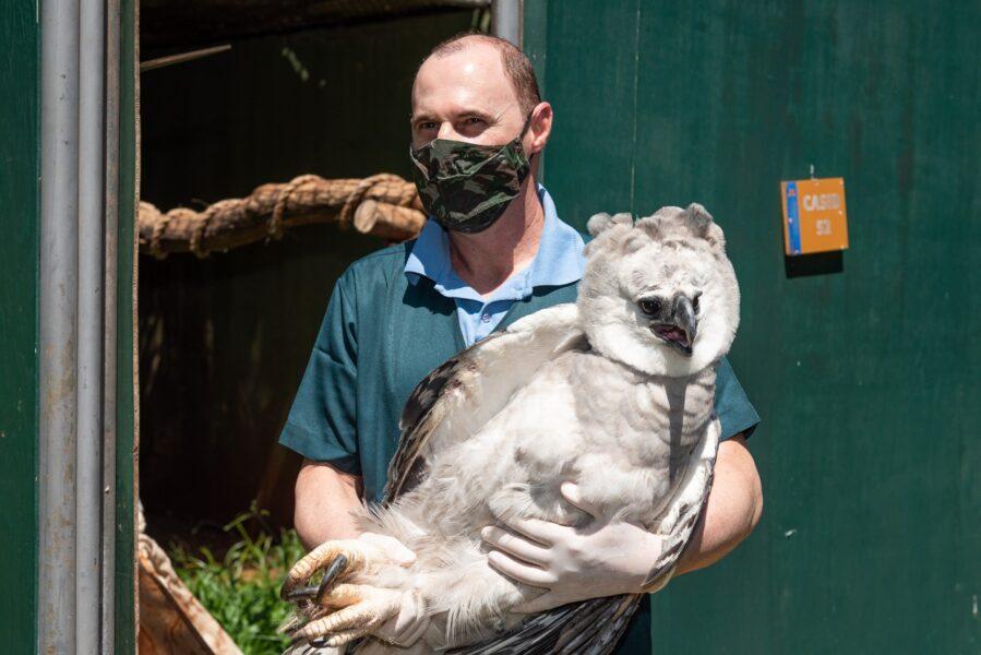 Zoológico alemão manifesta interesse em manter cooperação com o Refúgio Bela Vista, da Itaipu