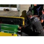 Empresário é preso por esconder 33 cilindros de oxigênio em Manaus