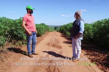Utilização de técnicas em culturas perenes | AGRICULTURA DE PRECISÃO