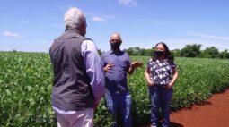 Cooperativismo ajuda no planejamento da produção | RALLY DE PRODUTIVIDADE