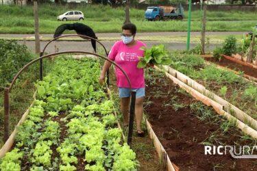 Confira os destaques do RIC Rural de domingo (21 de fevereiro)