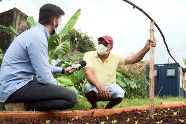 Hortas comunitárias garantem renda durante a pandemia