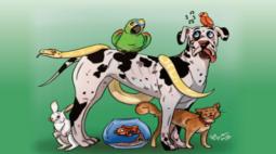 Manual de Boas Práticas na Criação de Animais de Estimação