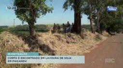 Corpo é encontrado em lavoura de soja em Paiçandu; crime está em investigação